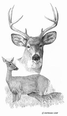 Wall Art - Drawing - Deer Family by Paul Shafranski