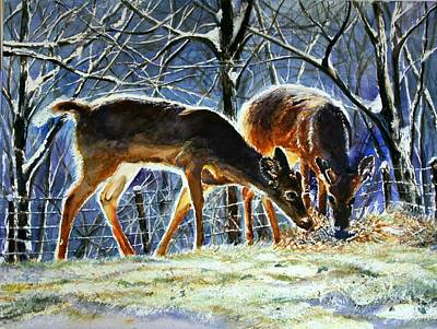 Winter Scene For Sale Painting - Deer Feeding In Winter by Maria Balcells