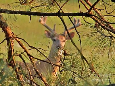 Deer Hunters' Fantasy Art Print by Marilyn Smith