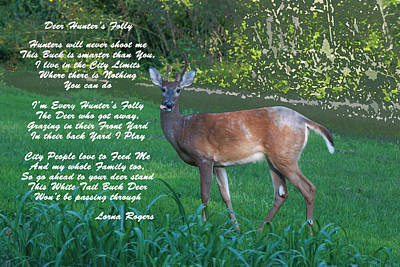 Photograph - Deer Hunter's Folly by Lorna R Mills DBA  Lorna Rogers Photography