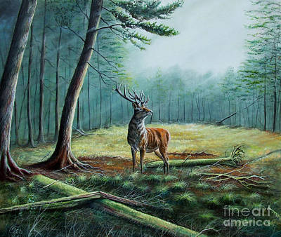 Sanfrancisco Painting - Deer In A Forest Glade by Osi