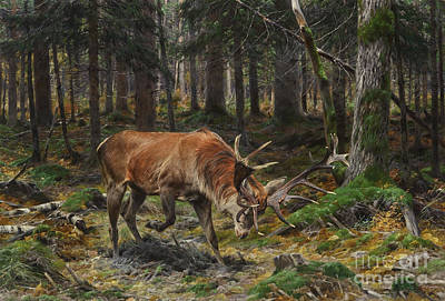 Wooden Painting - Deer In A Forest Glade by Celestial Images