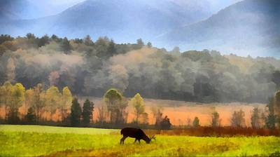 Painting - Deer In Cades Cove Smoky Mountains National Park by Dan Sproul