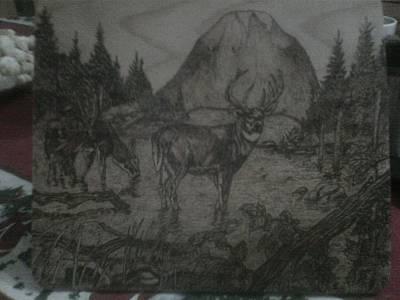 Deer In Nature Original by Marko Safran