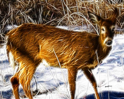 Deer In Winter Art Print