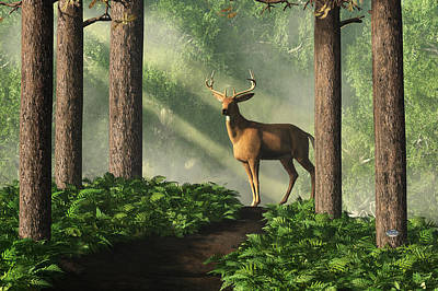 Deer On A Forest Path Art Print by Daniel Eskridge