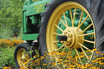 Deere 2 Art Print by Lynn Sprowl