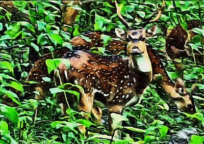 Deer's Green Day Art Print