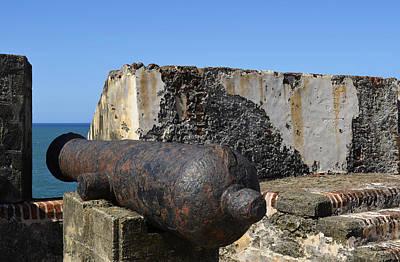 Photograph - Defending The Fort by Shanna Hyatt