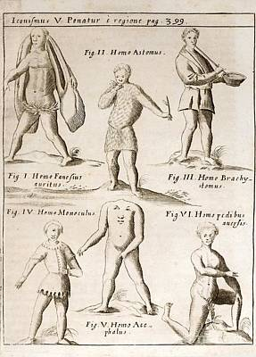 Deformities Real And Imagined, 1662 Art Print