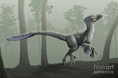 Deinonychus Antirrhopus In A Misty Print by Emily Willoughby