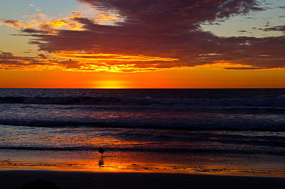 Photograph - Del Mar Sunset by Randy Bayne