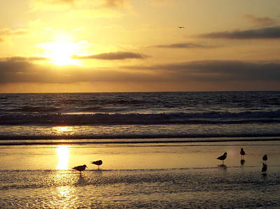 Photograph - Del Mar Sunset by Scott Norton