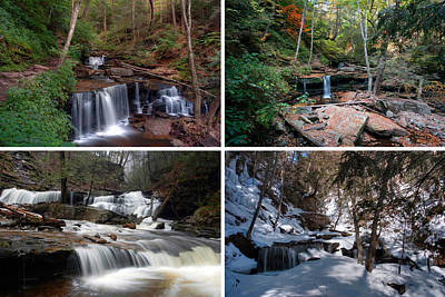 Photograph - Delaware Falls In Every Season by Gene Walls