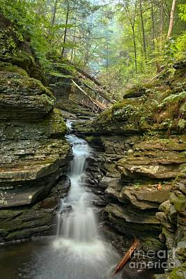 Photograph - Delaware Gap Adams Falls by Adam Jewell