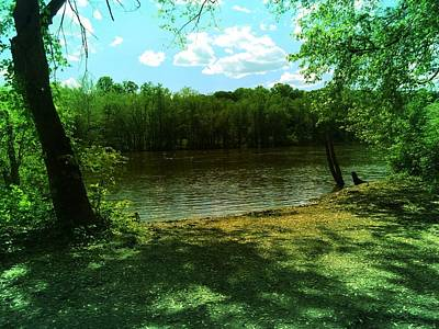 Photograph - Delaware River Summer by Maggie Vlazny