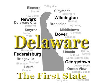 Photograph - Delaware State Pride Map Silhouette  by Keith Webber Jr