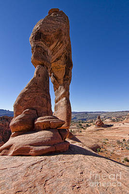 Photograph - Delicate Arch by Jason Abando