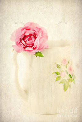 Antique Roses Vase Wall Art - Photograph - Delicate by Darren Fisher