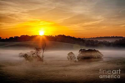 Delicate Dawn Art Print by Dan Carmichael