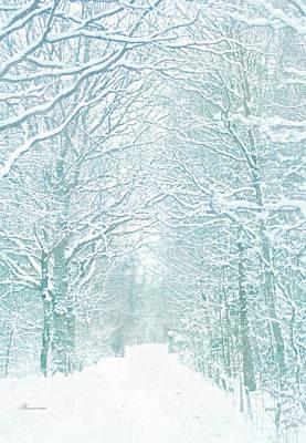 Delicate Winter Romance Art Print