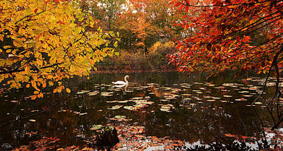Autumn In New England Photograph - Delightful Autumn by Lourry Legarde