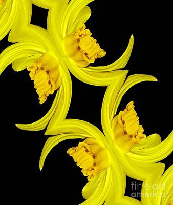Photograph - Delightful Daffodil Abstract by Rose Santuci-Sofranko