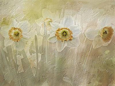 Delightful Daffodils Art Print by Diane Schuster