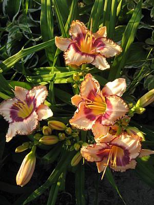 Delightful Peach Lilies Original by Elisabeth Ann