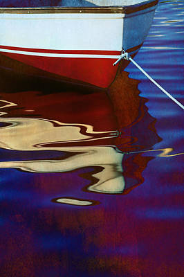 Abstract Reflection Photograph - Delphin 2 by Laura Fasulo