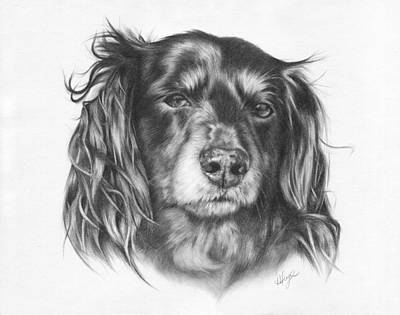 Dachshund Puppy Drawing - Delphine - Dachshund by Heather Page