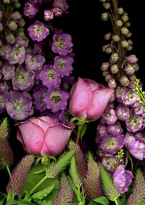 Delphinium Photograph - Delphinium And Roses On Black Background by Anna Miller