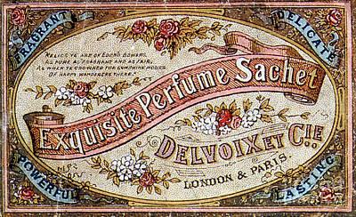Delvoix Exquisite Perfume Sachet, 1880 Art Print by Science Source