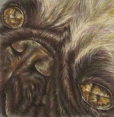 Demille The Pug Art Print by Lisa Marie Szkolnik