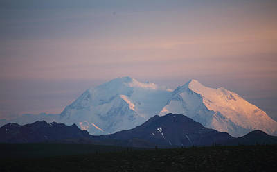 Photograph - Denali At Sunset by Jean Clark