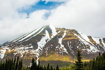 Photograph - Denali Mountain by Shey Stitt