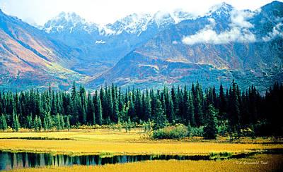 Denali Mountains Denali National Park Alaska Art Print