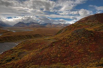 Photograph - Denali National Park by Darlene Bushue