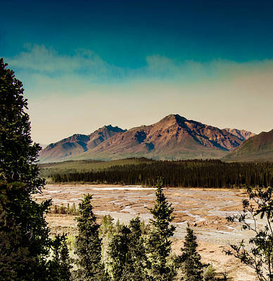 Photograph - Denali Toklat River Bed by Penny Lisowski