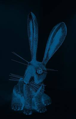 Photograph - Denim Blue New Mexico Rabbit by Rob Hans