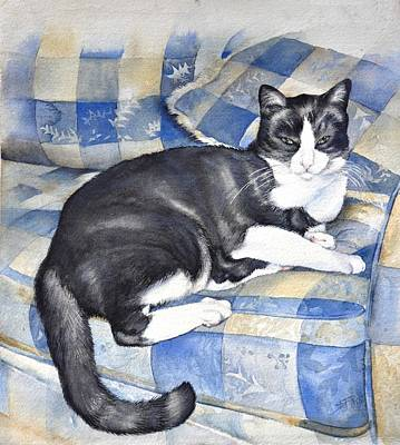 Denise's Cat Art Print by Sandra Phryce-Jones