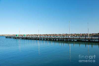 Photograph - Denison Port by Yew Kwang