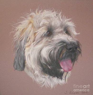 Dennis - Wheaten Terrier Art Print by Joanne Simpson