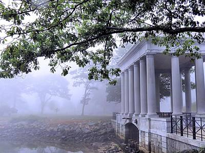 Photograph - Dense Fog Plymouth Rock Canopy by Janice Drew