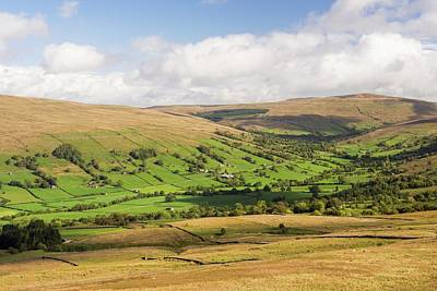Pasture Woodland Photograph - Dentdale In The Yorkshire Dales by Ashley Cooper