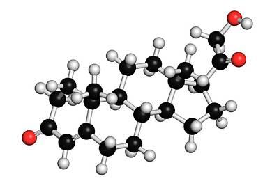 Deoxycorticosterone Hormone Molecule Art Print