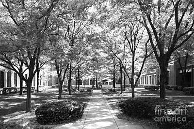 Depaul University Richardson Library Courtyard Art Print by University Icons