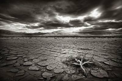 Death Valley Photograph - Deprivation by Mirko Vecernik