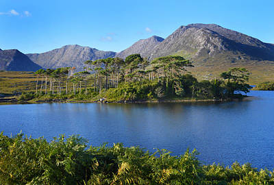 Photograph - Derryclare Lough Connemara. by Terence Davis