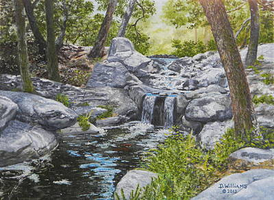 Painting - Descanso Falls by Duwayne Williams